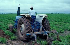 Farming Problems