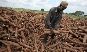 Problems of Agricultural Development in Nigeria