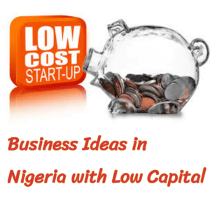 Business Ideas In Nigeria With Low Capital