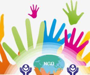 NGO in Nigeria