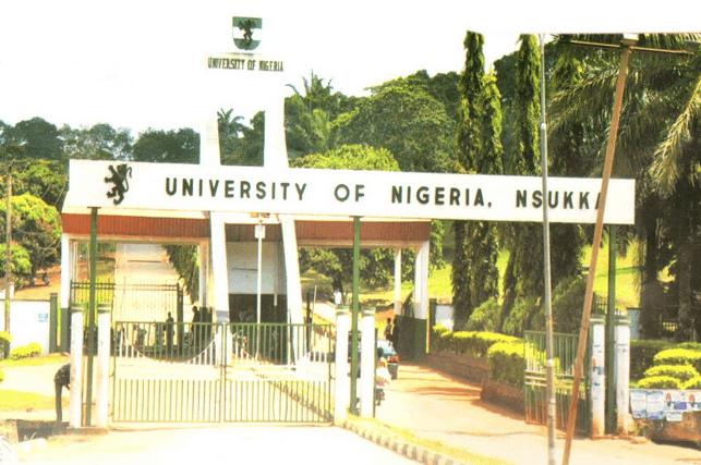 university of nigeria school fees