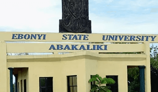 ebonyi state university school fees