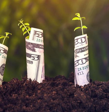 How to Build Wealth in the Stock Market