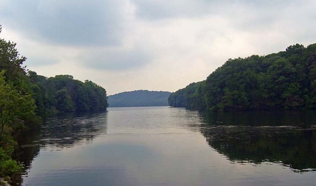 Cross River Estuary