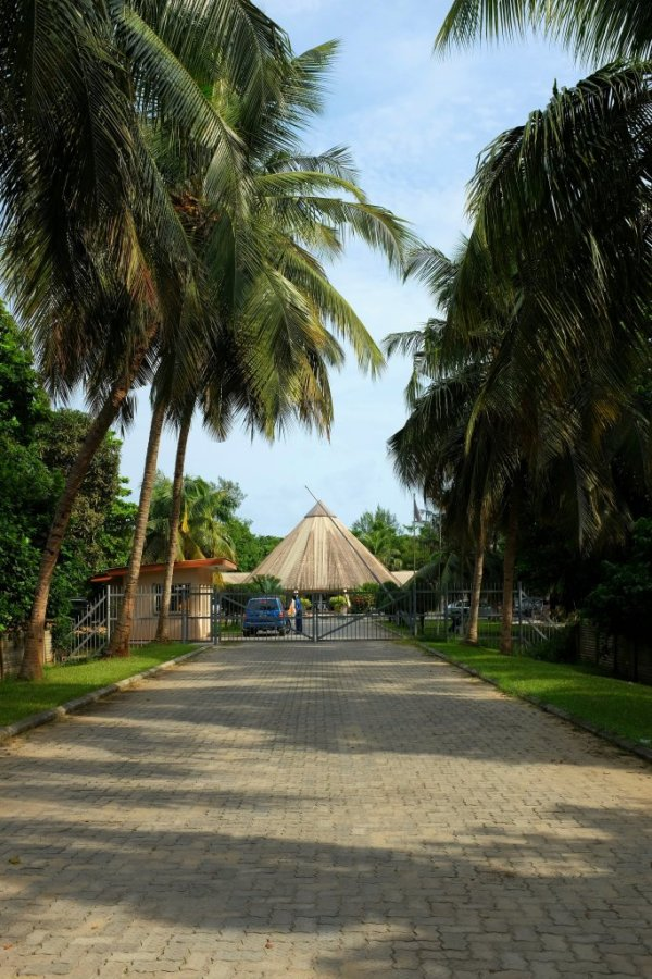 Everything You Need To Know: The Lekki Conservation Centre
