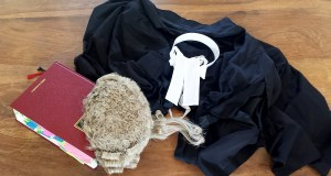senior lawyer