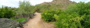 (c) Desert Botanical Garden