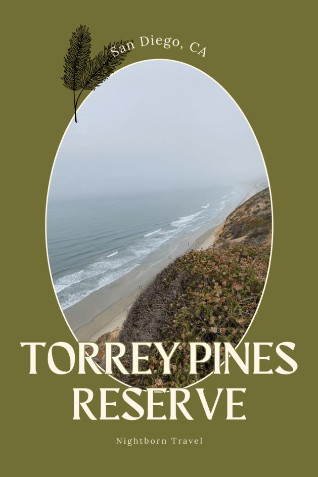 torrey pines state reserve