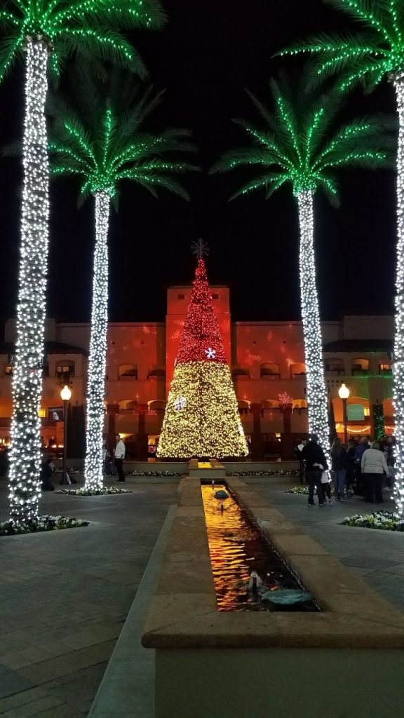 Arizona Christmas Vacation