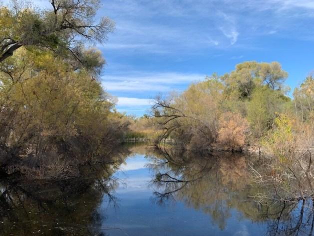 hassayampa river preserve
