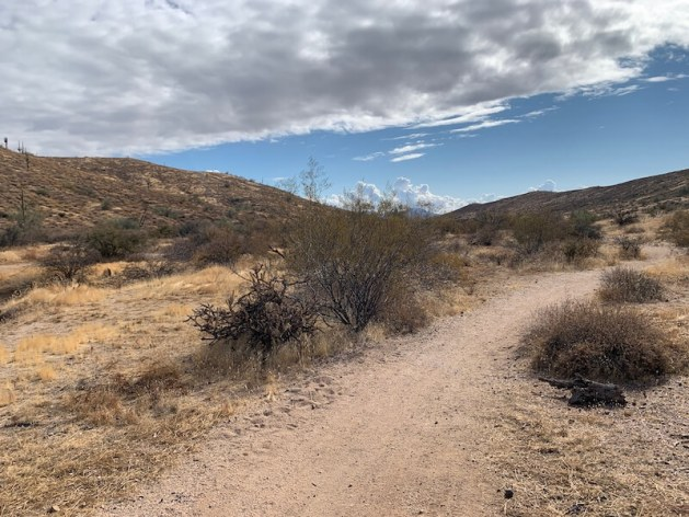 McDowell Mountain Regional Park: Scenic Trail