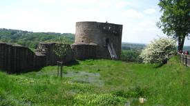 The tower of Burg Blankenberg; the blue haze on the grass is blue-flowered Veronica.