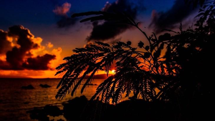沖縄の夜はおすすめの安いガールズバーへGO!ウチナーギャルと楽しめる魅惑の5店
