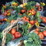 A trunk full of CSA baskets, ready for delivery!