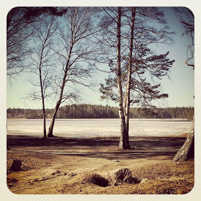 Медное Озеро. Ленинградская область
