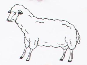 麒麟・川島の描いた『羊』