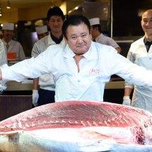 Fischauktion in Japan