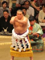 Yokozuna, Grand champion top rank.