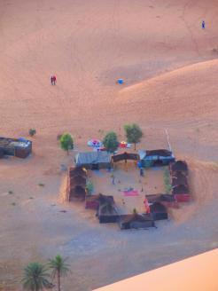 Desert Safari (12)