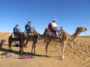 Desert Safari (4)