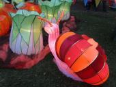 Chinese Lantern Festival, Auckland NZ