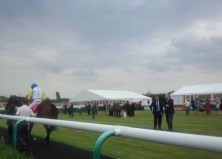 Flutter on the Gee Gees (3)