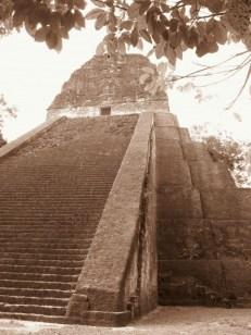 Tikal (5)