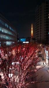 Bilan PVT Japon - 2 mois
