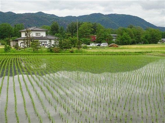 Le Japon de la campagne