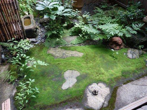 Un jardin dans une maison japonaise