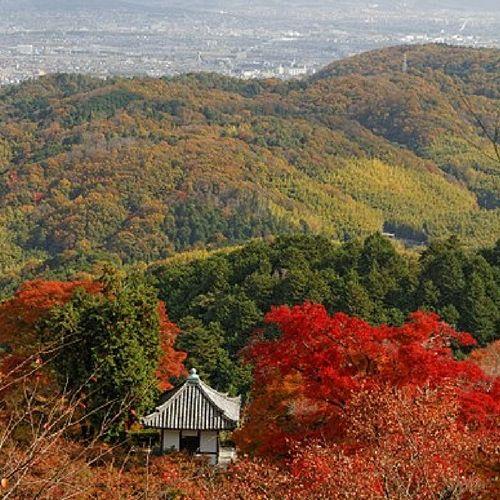 Les Koyo à Kyoto