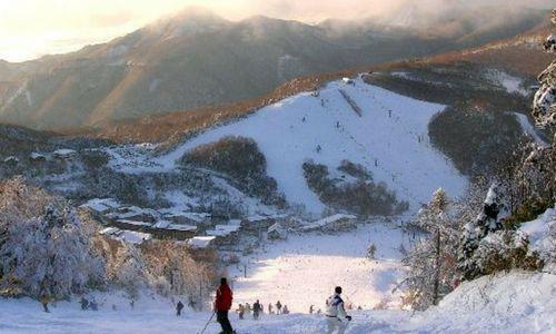 Des vacances à la neige au Japon