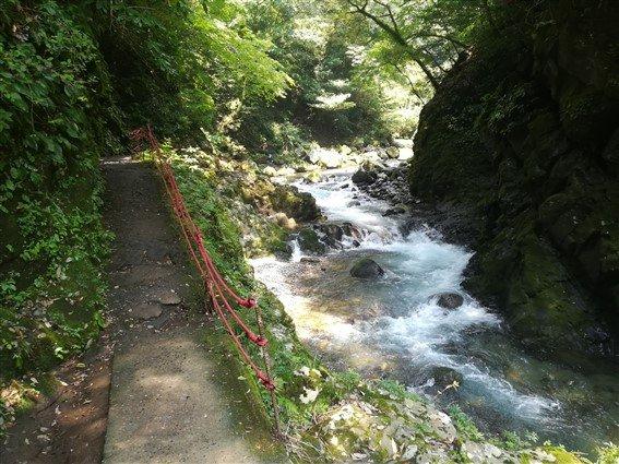 Le chemin vers la grotte d'Amaterasu