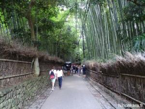 Arashiyama (13)