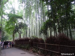 Arashiyama (14)