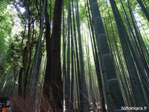 Arashiyama (25)