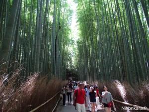 Arashiyama (27)