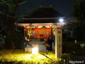 Asakusa by night (13)