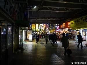 Balade à Ueno (12)