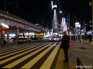 Balade à Ueno (13)