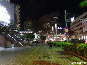 Escapade à Okinawa (16)