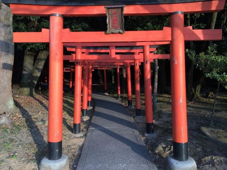 橿原神宮 (4)