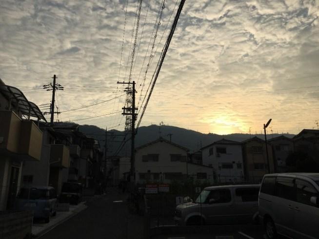 盾津 (4)