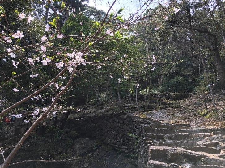 天磐盾 神倉神社 (52) (1024x768)