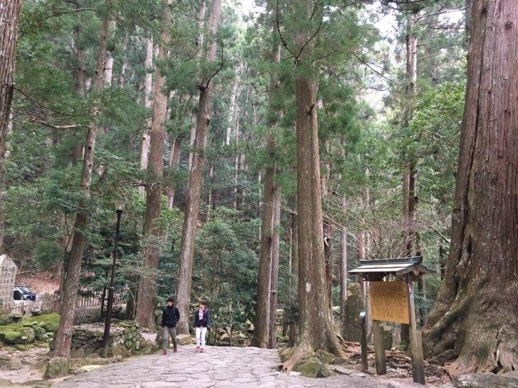 那智の大滝 (91) (1024x768)