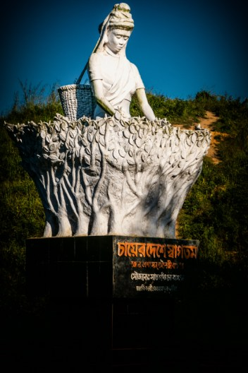 Statue of a girl collecting tea leaf on her basket at Srimangal. A symbolic statue at the tea capital of Bangladesh.
