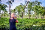 Visiting tea plantations of Srimangal