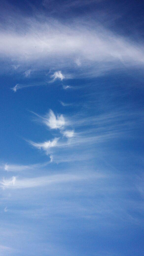 雲で現れた銀龍