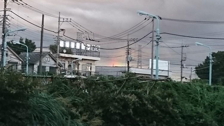 虹006(2016.8.30撮影)