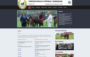 vhvstadskanaal.nl